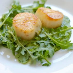 Two pan seared scallops with arugula pesto on a white plate