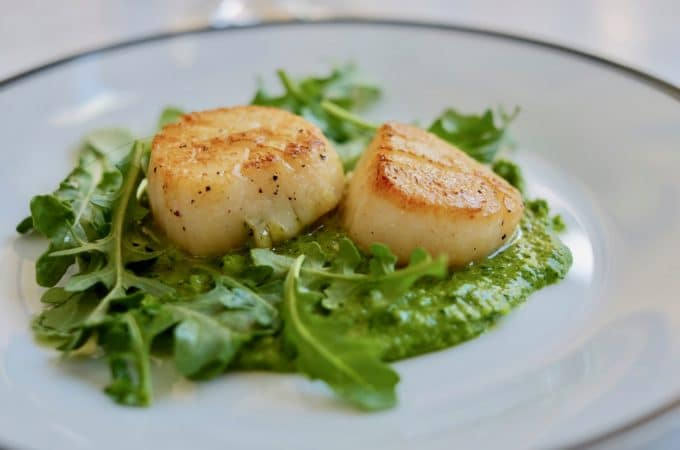 Pan Seared Scallops with Arugula Mint Pesto